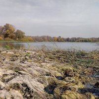 Озеро Казанское :: Александр Алексеев