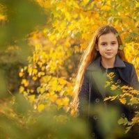 Золотая осень :: Вера Сафонова