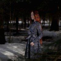 зимний лес :: Андрей Фролов