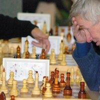 шах и мат... :: леонид логинов
