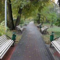 Опустели лавочки. :: Александр Бабаев