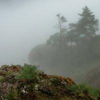По ту сторону тумана.. :: Марина Фомина.
