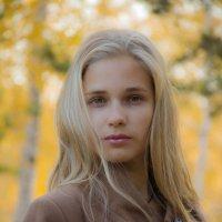 Осень – время мечтать. :: Николай Иванович Щенов