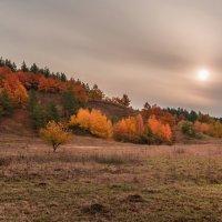 Осень :: Сергей Степанов