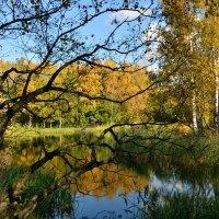 В старом парке тишина :: Леонид Иванчук