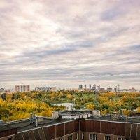 Пейзаж из окна :: Наталия Горюнова