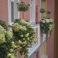 Балкончики :: Наталия П
