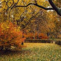 Осень... :: Viktor Nogovitsin
