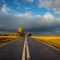 Дорога в осень :: Alhna ---