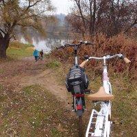 на велосипеде по осени :: Natalia Mihailova