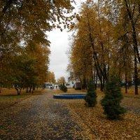 Осенняя аллея :: Tarka