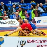 Вольная борьба :: Олег Адамцевич