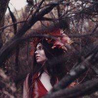 Осень :: Анна Янн