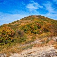 Гора Машук осенью :: Николай Николенко