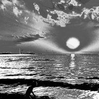 Собиратель солнца :: толик токарев
