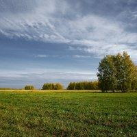 Осенний пейзаж :: Eugene A. Chigrinski