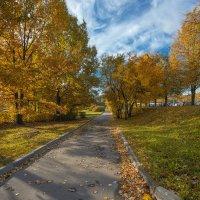 Осень :: Serge Riazanov