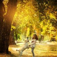 Осень :: Ирина Яшкина