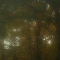 Осень, акварель в тёмных тонах :: Ирина Холодная