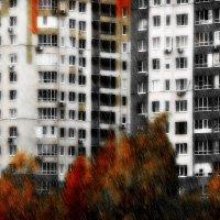 Окна, лоджии, октябрь.... :: Андрей Головкин
