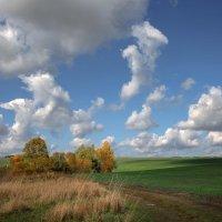 Осень :: Лидия Цапко
