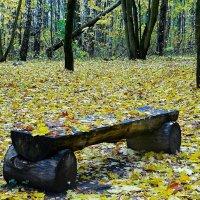 Интерьер осеннего парка :: Милешкин Владимир Алексеевич