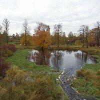 Осень в Ушаках :: El Кондукова