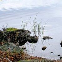 Озеро Сайма :: Ольга Васильева