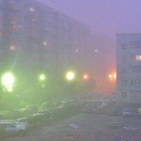 Вчера. Рано утром. :: юрий Амосов