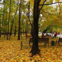 Экватор осени в городе :: Андрей Лукьянов