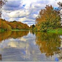 Поплыли листья по реке :: Вячеслав Минаев