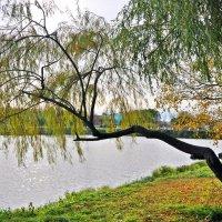 Октябрь :: Aquarius - Сергей