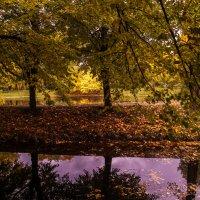 Осень в парке Екатерингоф. Санкт-Петербург :: Елена Кириллова
