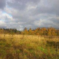Осень :: Валентина Ломакина