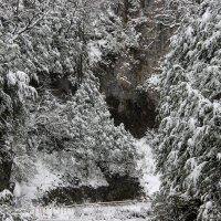Новогодние каникулы :: Вячеслав Случившийся