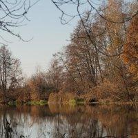 осень :: sergeu46 Рагулин