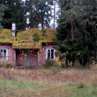 Старый дом :: Наталия Зыбайло