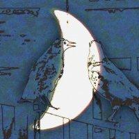 птицы :: Юлия Денискина