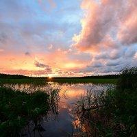 Вечер на озере :: Николай