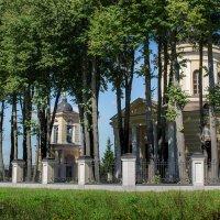 Храм в Талеже. :: Владимир Безбородов