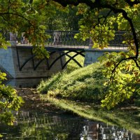 Спрятавшийся мостик :: Владимир Гилясев