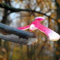 А птица удачи опять прилетит! Весной...:) :: Андрей Заломленков