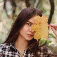 Осень к нам пришла :: Aleksandr Mushynskyi