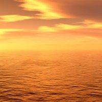 море солнца и тепла :: linnud