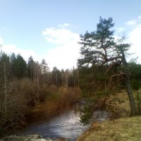 у реки :: alpman виктор