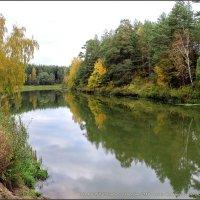 Я хожу, грущу один: Осень рядом где-то. Жёлтым листиком в реке утонуло лето.// :: Владимир ( Vovan50Nestor )