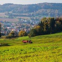 пригород , юг Германии :: Viktor Schwindt