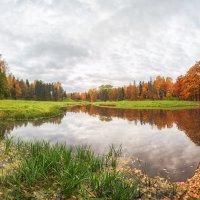 Осень в Павловском парке :: Александр Кислицын