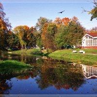 Рисует осень акварелью.. :: Elena N