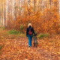 Уходила осень золотая... (монокль) :: Валерий Горбунов